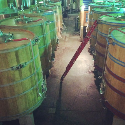 Lined up Wine Tanks